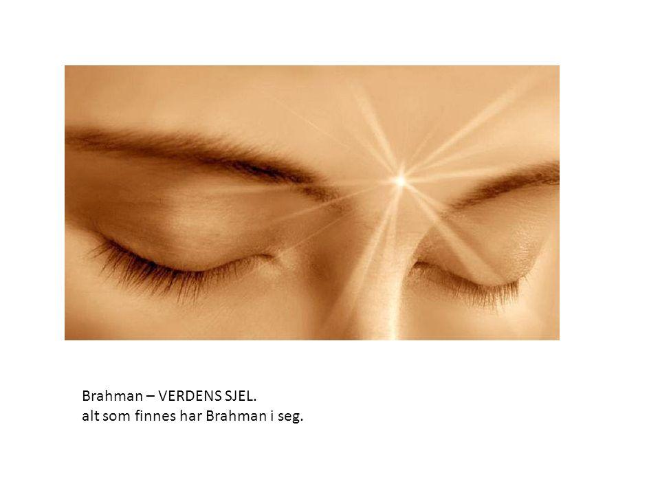 Brahman – VERDENS SJEL. alt som finnes har Brahman i seg.