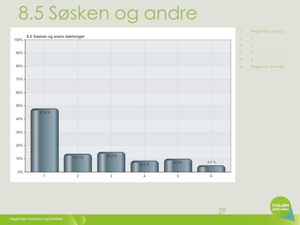 Høgskolen i Buskerud og Vestfold 30 8.6 Andre studenter ved HiVe 1Meget liten grad (1) 22 33 44 55 6Meget stor grad (6)