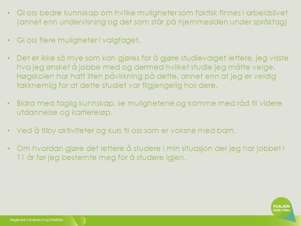 Høgskolen i Buskerud og Vestfold 38 10.