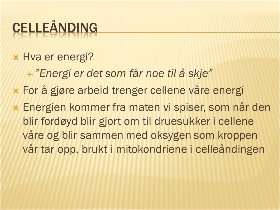  Hva er energi.