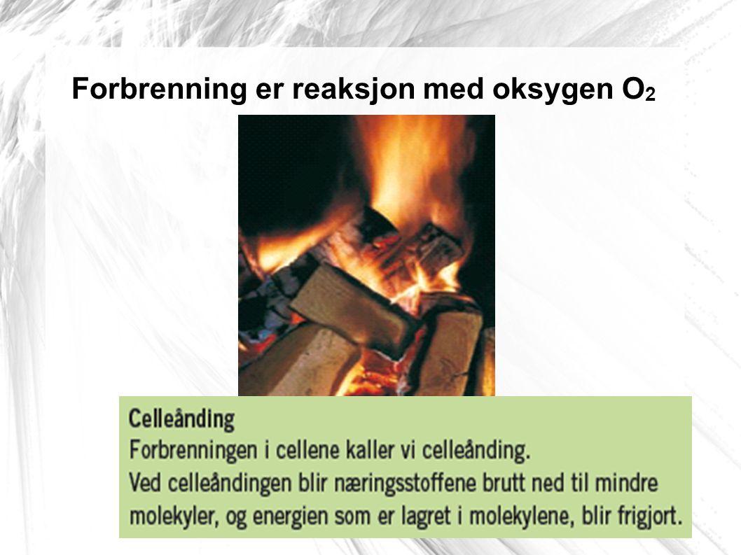 Forbrenning er reaksjon med oksygen O 2