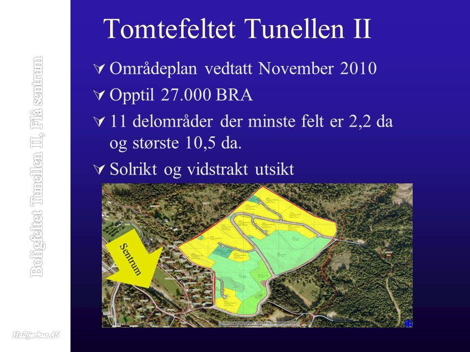 Tomtefeltet Tunellen II  Områdeplan vedtatt November 2010  Opptil 27.000 BRA  11 delområder der minste felt er 2,2 da og største 10,5 da.