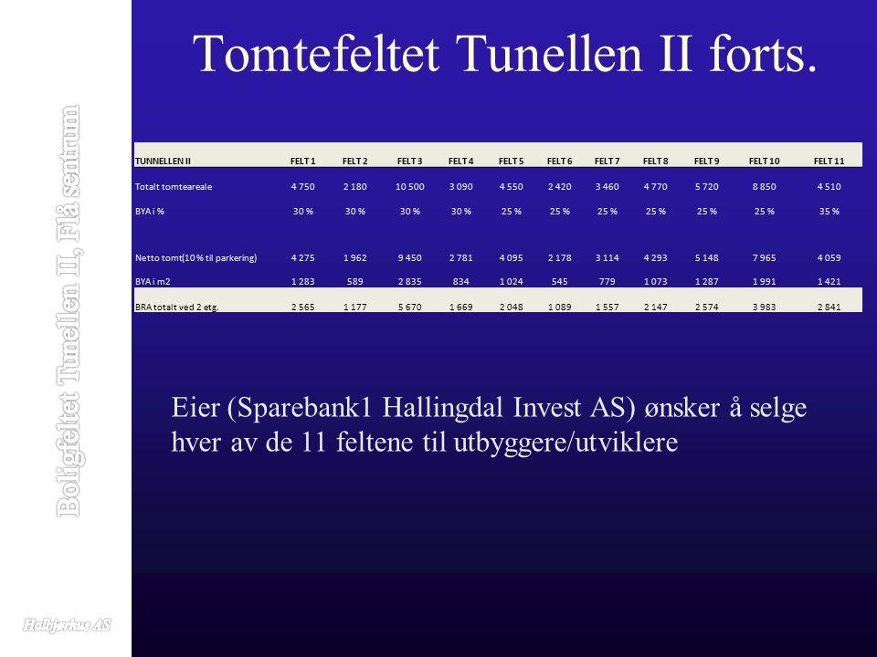 Tomtefeltet Tunellen II forts.