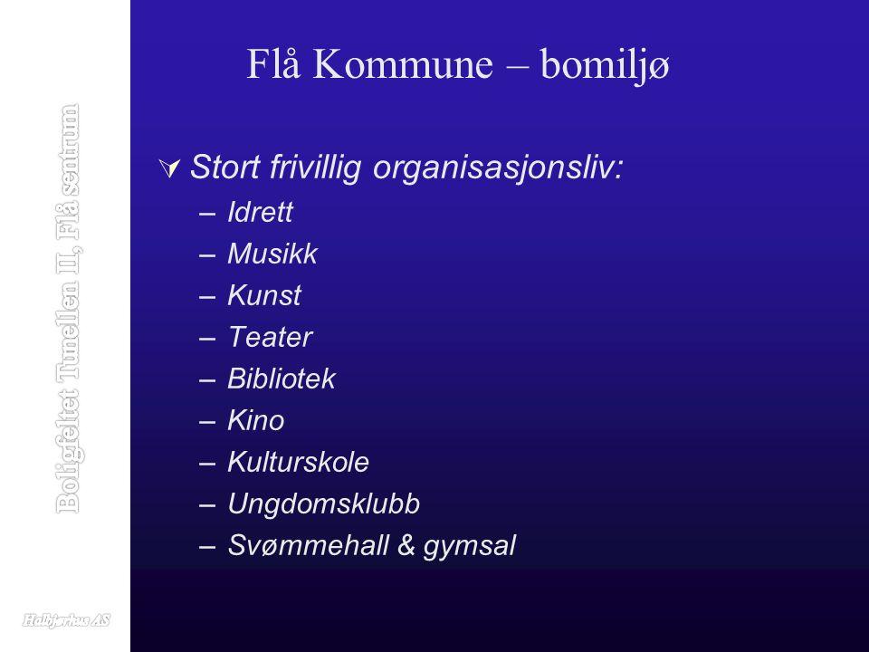  Stort frivillig organisasjonsliv: –Idrett –Musikk –Kunst –Teater –Bibliotek –Kino –Kulturskole –Ungdomsklubb –Svømmehall & gymsal Flå Kommune – bomiljø