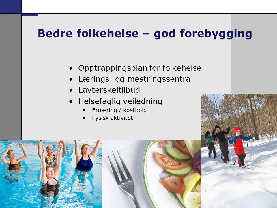16 Opptrappingsplan for folkehelse Lærings- og mestringssentra Lavterskeltilbud Helsefaglig veiledning Ernæring / kosthold Fysisk aktivitet Bedre folkehelse – god forebygging