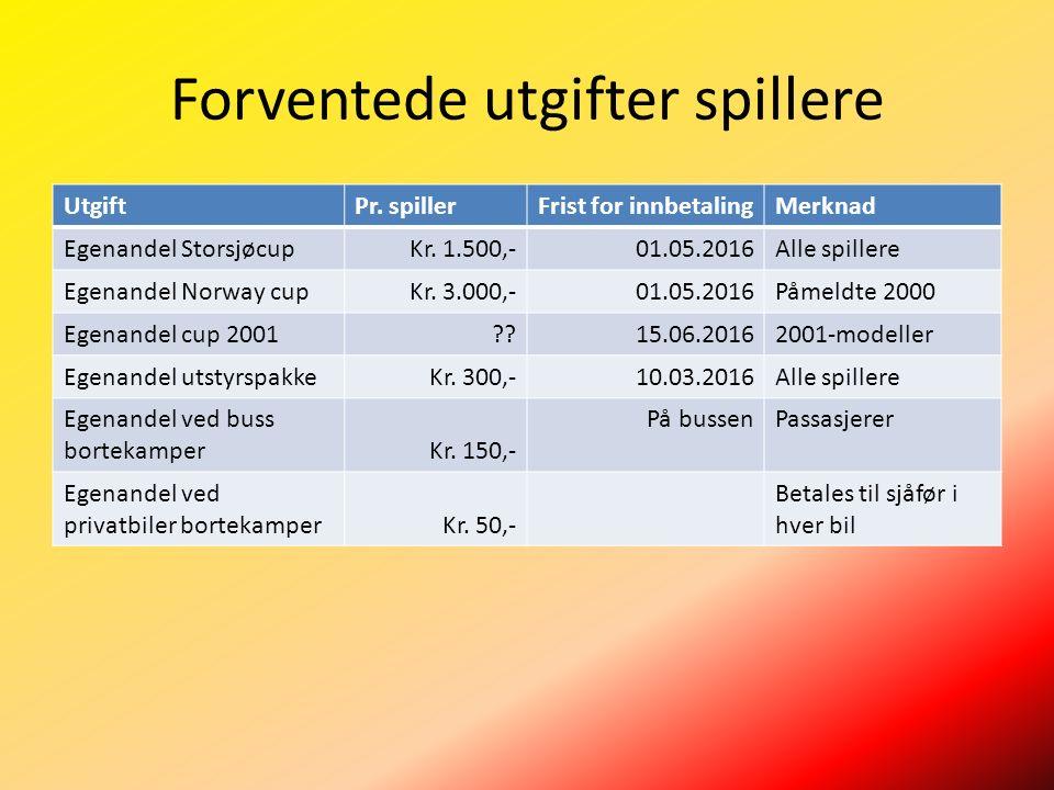 Forventede utgifter spillere UtgiftPr. spillerFrist for innbetalingMerknad Egenandel StorsjøcupKr.