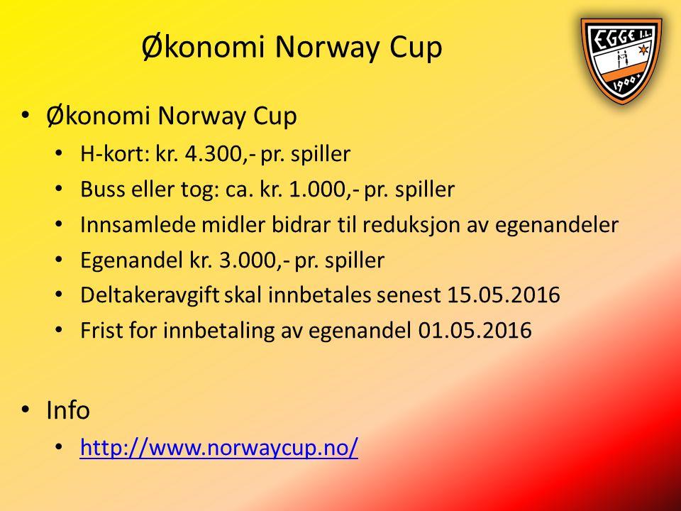 Økonomi Norway Cup H-kort: kr. 4.300,- pr. spiller Buss eller tog: ca.