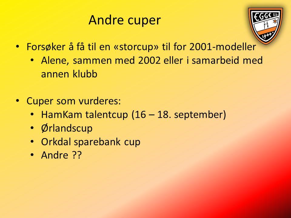 Andre cuper Forsøker å få til en «storcup» til for 2001-modeller Alene, sammen med 2002 eller i samarbeid med annen klubb Cuper som vurderes: HamKam talentcup (16 – 18.