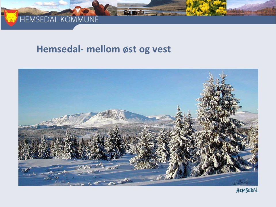 Hemsedal- mellom øst og vest