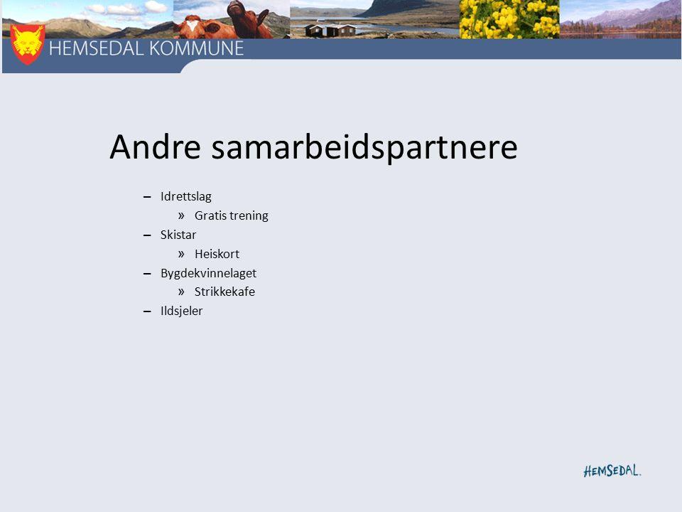 Andre samarbeidspartnere – Idrettslag » Gratis trening – Skistar » Heiskort – Bygdekvinnelaget » Strikkekafe – Ildsjeler