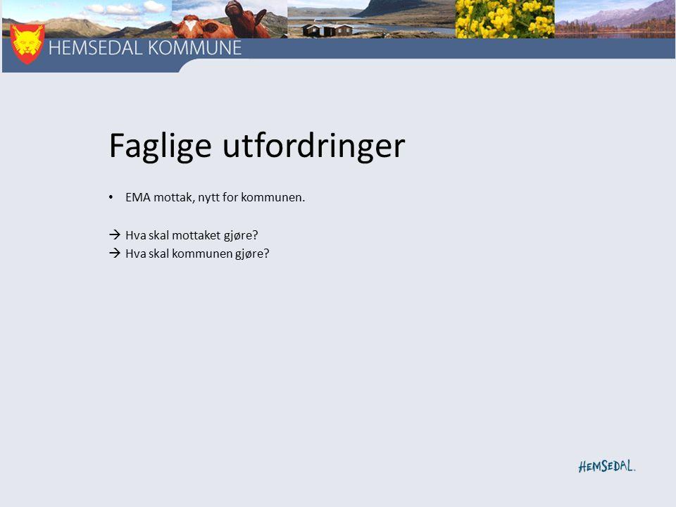 Faglige utfordringer EMA mottak, nytt for kommunen.