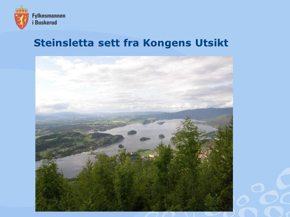 Steinssletta Steinssletta – Hole og Ringerike kommune 12 147 daa (75 % av arealet ligger i Hole) 54 gårdsbruk (36 i Hole og 18 i Ringerike) Hovedsakelig fulldyrka mark, med innslag av bl.a.
