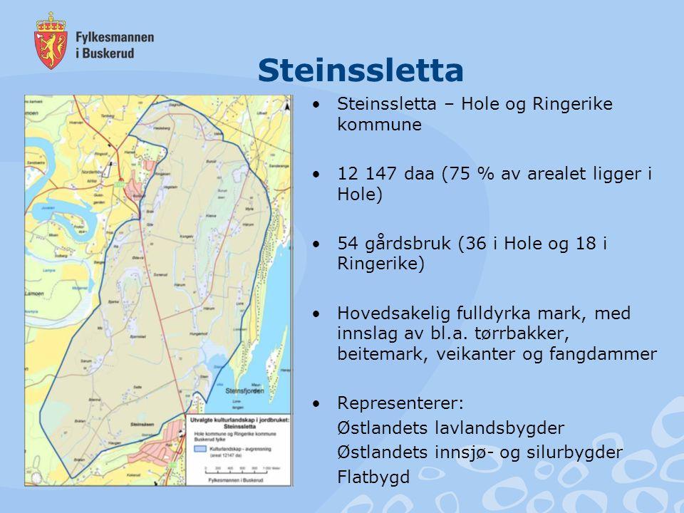 Steinssletta Steinssletta – Hole og Ringerike kommune 12 147 daa (75 % av arealet ligger i Hole) 54 gårdsbruk (36 i Hole og 18 i Ringerike) Hovedsakel
