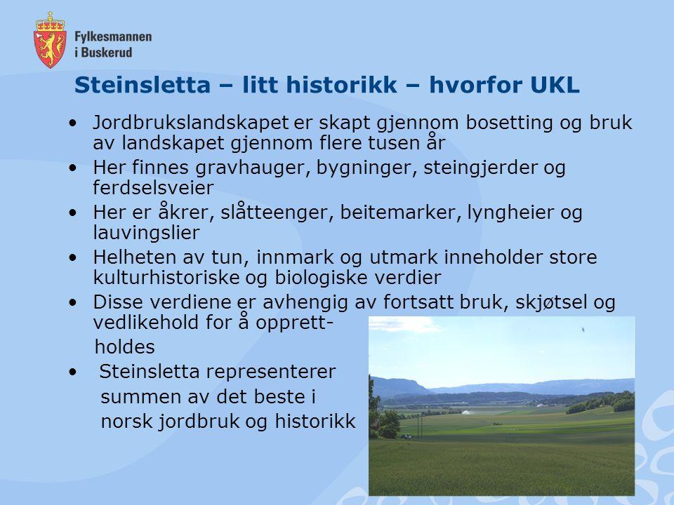 Steinsletta – litt historikk – hvorfor UKL Jordbrukslandskapet er skapt gjennom bosetting og bruk av landskapet gjennom flere tusen år Her finnes grav