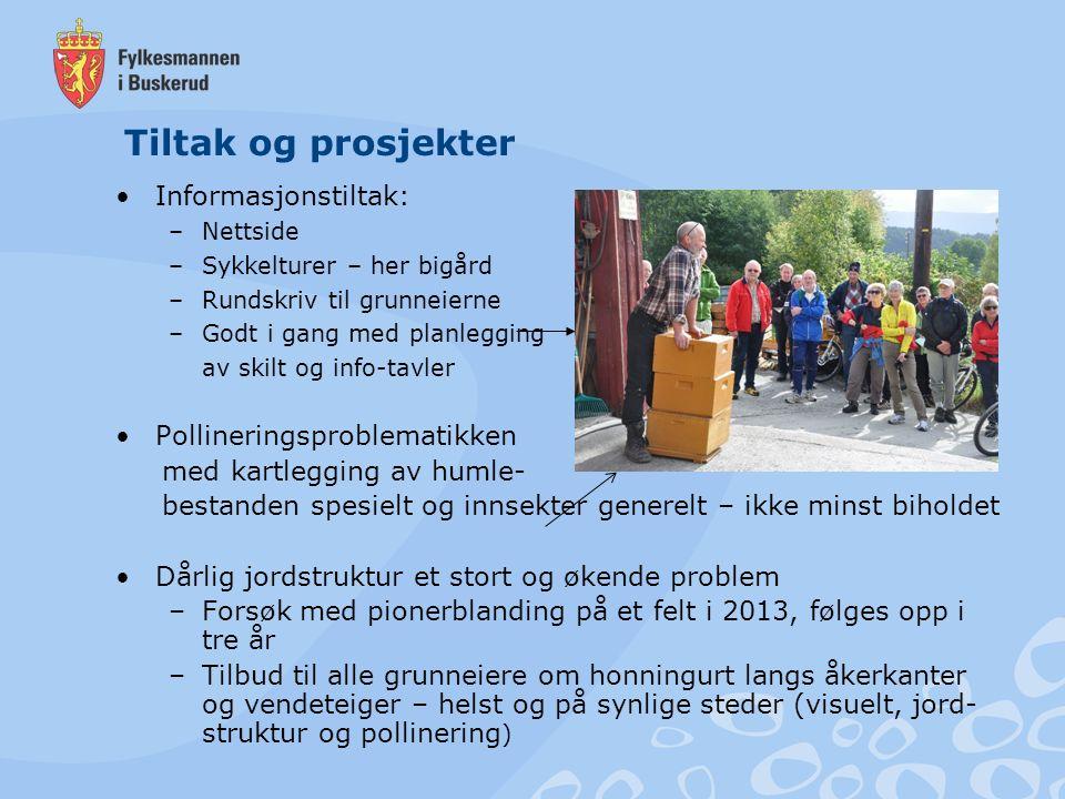Informasjonstiltak: –Nettside –Sykkelturer – her bigård –Rundskriv til grunneierne –Godt i gang med planlegging av skilt og info-tavler Pollineringspr