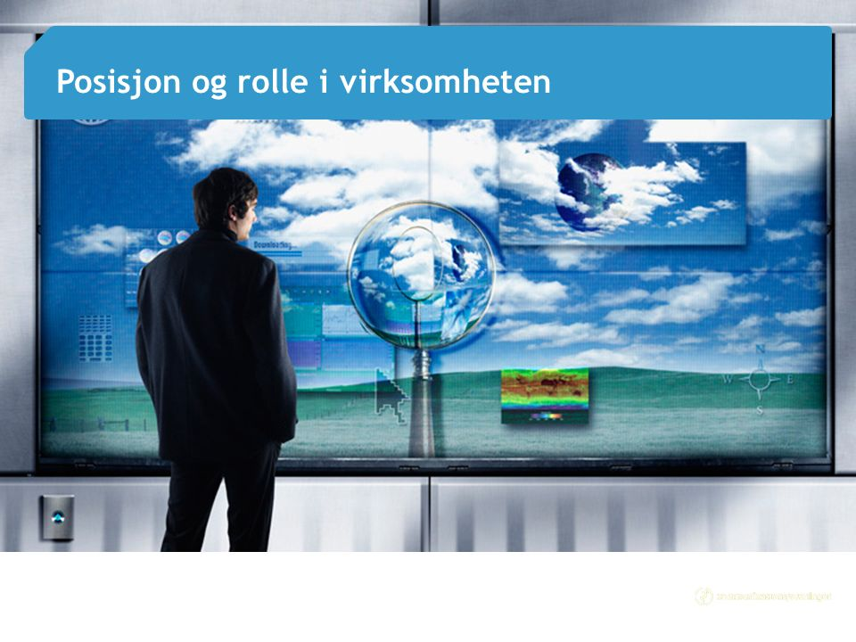 4 Posisjon og rolle i virksomheten