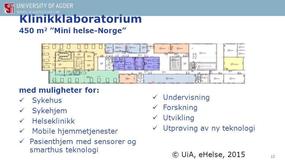 Klinikklaboratorium 450 m 2 Mini helse-Norge © UiA, eHelse, 2015 med muligheter for: Sykehus Sykehjem Helseklinikk Mobile hjemmetjenester Pasienthjem med sensorer og smarthus teknologi Undervisning Forskning Utvikling Utprøving av ny teknologi 12