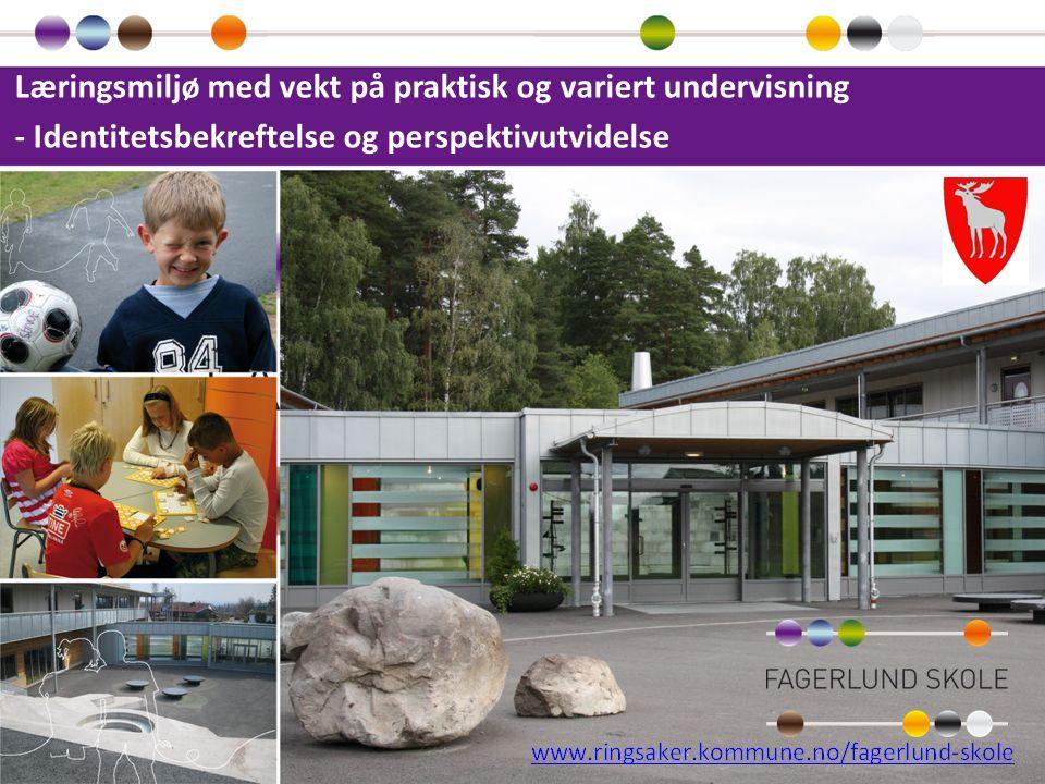 Læringsmiljø med vekt på praktisk og variert undervisning - Identitetsbekreftelse og perspektivutvidelse