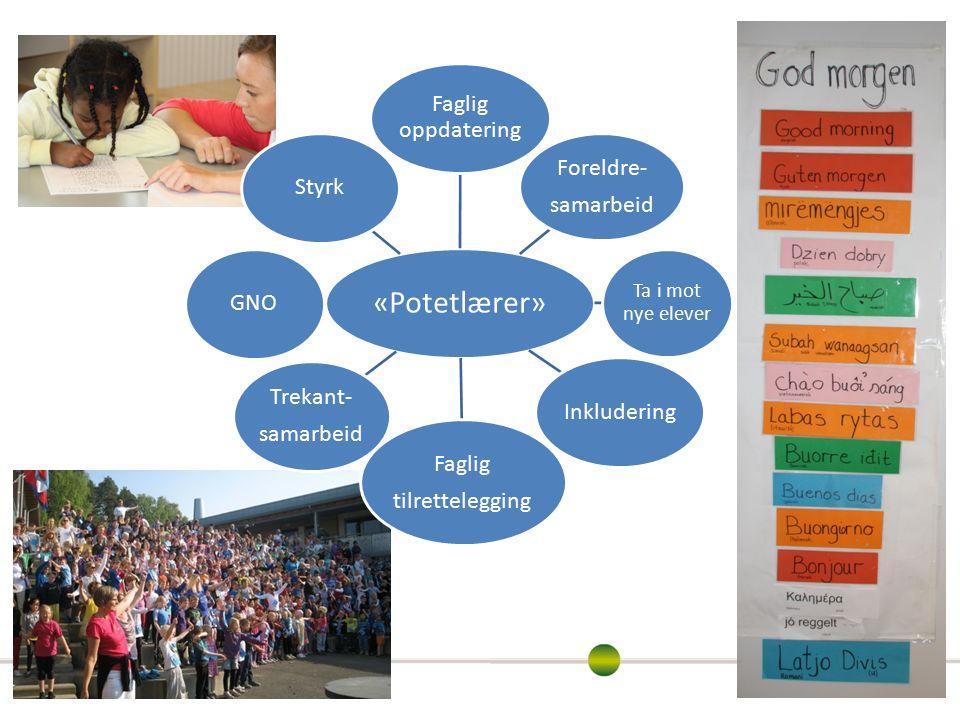 «Potetlærer» Faglig oppdatering Foreldre- samarbeid Ta i mot nye elever Inkludering Faglig tilrettelegging Trekant- samarbeid GNOStyrk