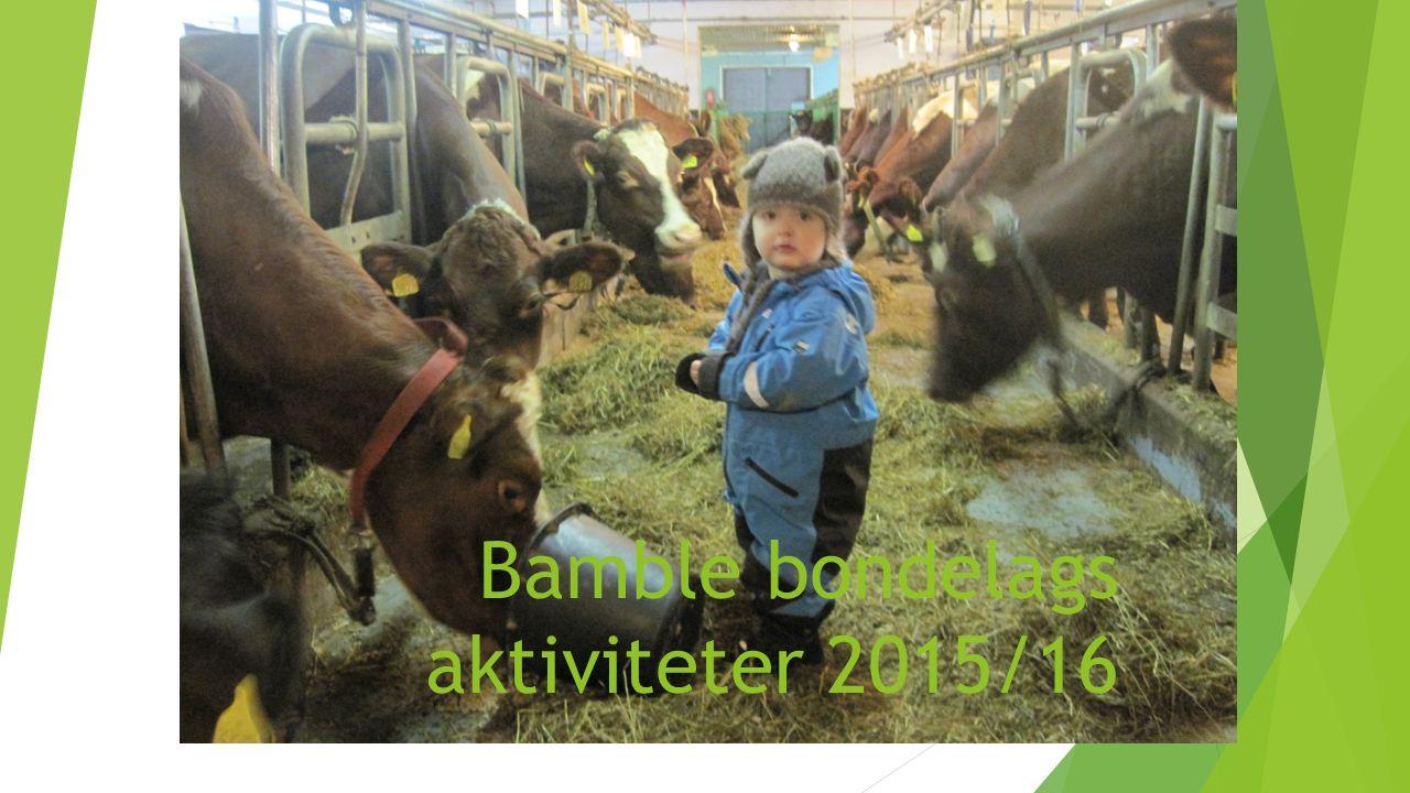 Bamble bondelags aktiviteter 2015/16