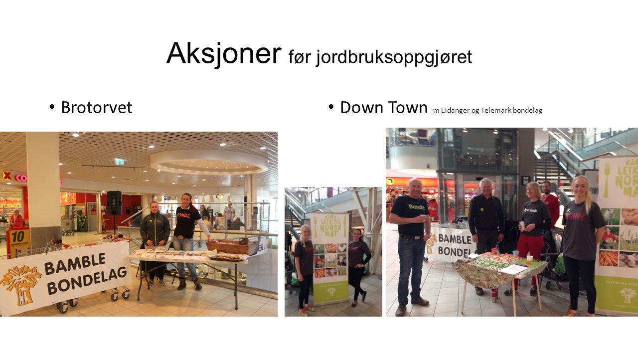 Aksjoner før jordbruksoppgjøret Brotorvet Down Town m Eidanger og Telemark bondelag