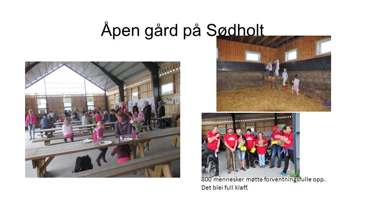 Åpen gård på Sødholt 800 mennesker møtte forventningsfulle opp. Det blei full klaff.