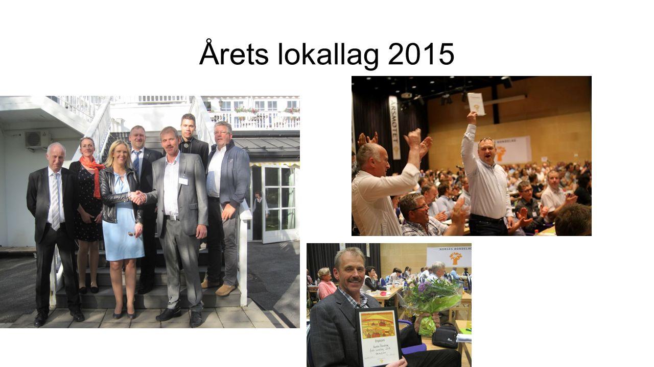 Årets lokallag 2015