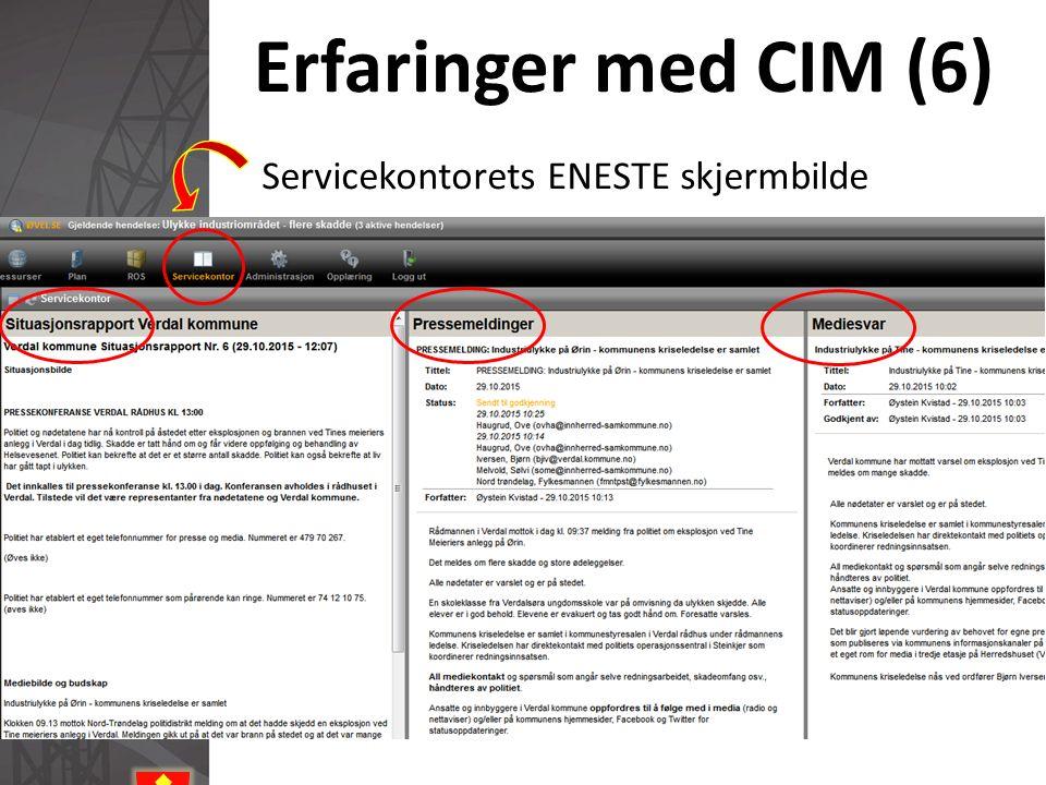 Erfaringer med CIM (6) Servicekontorets ENESTE skjermbilde