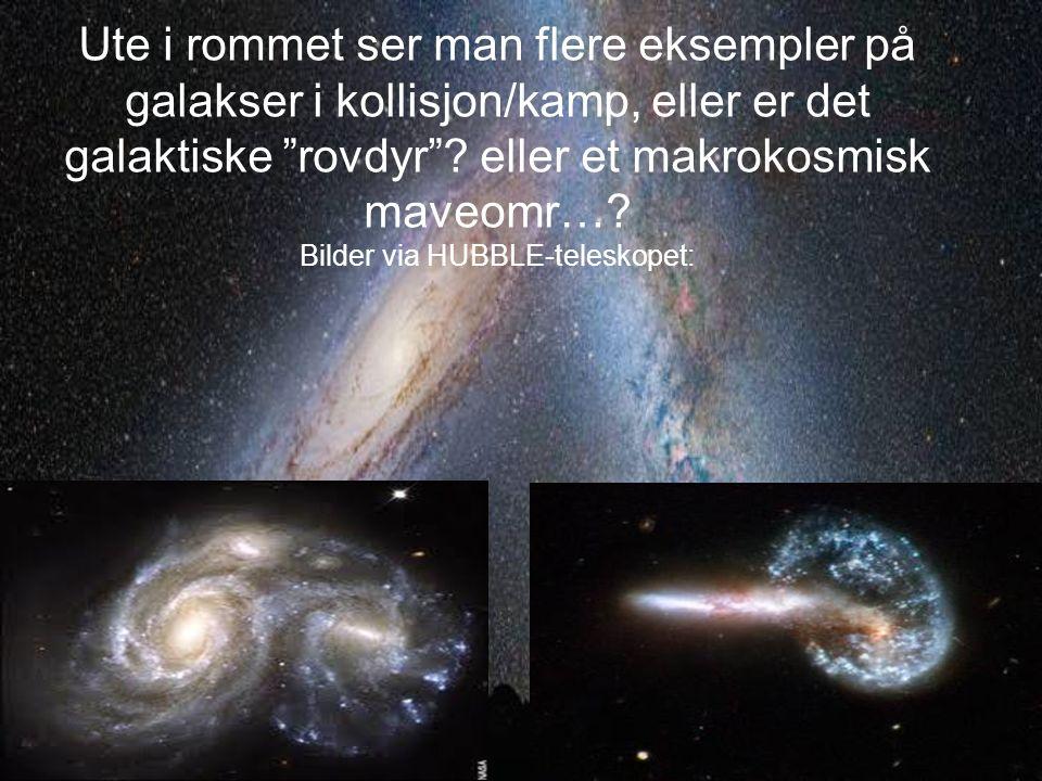 Ute i rommet ser man flere eksempler på galakser i kollisjon/kamp, eller er det galaktiske rovdyr .