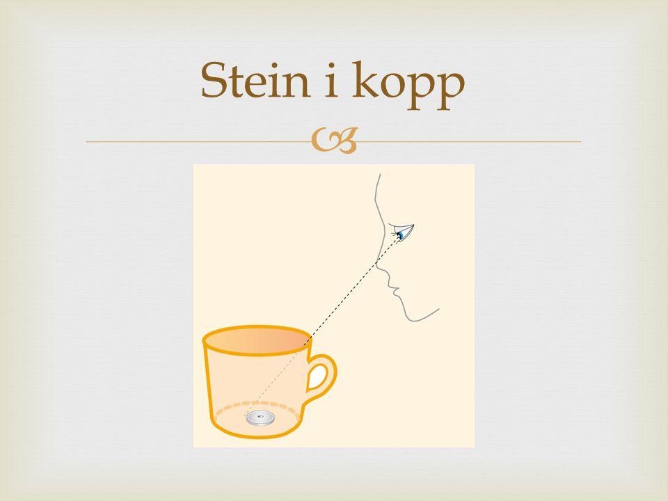  Stein i kopp
