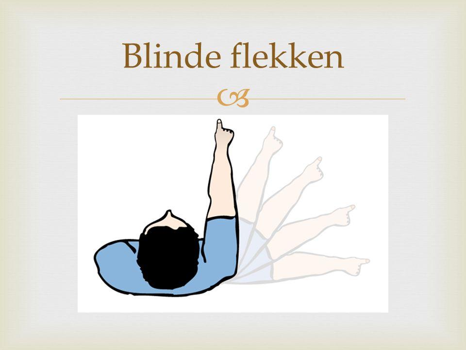  Blinde flekken