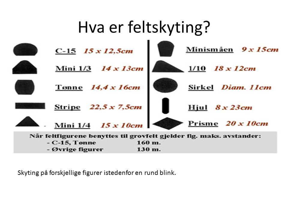 Trinn 9: www.feltskyting.no Gå inn på www.feltskyting.nowww.feltskyting.no Fyll inn: Kuletype Hastighet Sikteavstand Hullavstand Nullstilling 100 m Etter det, forandre intervall til 10 meter.