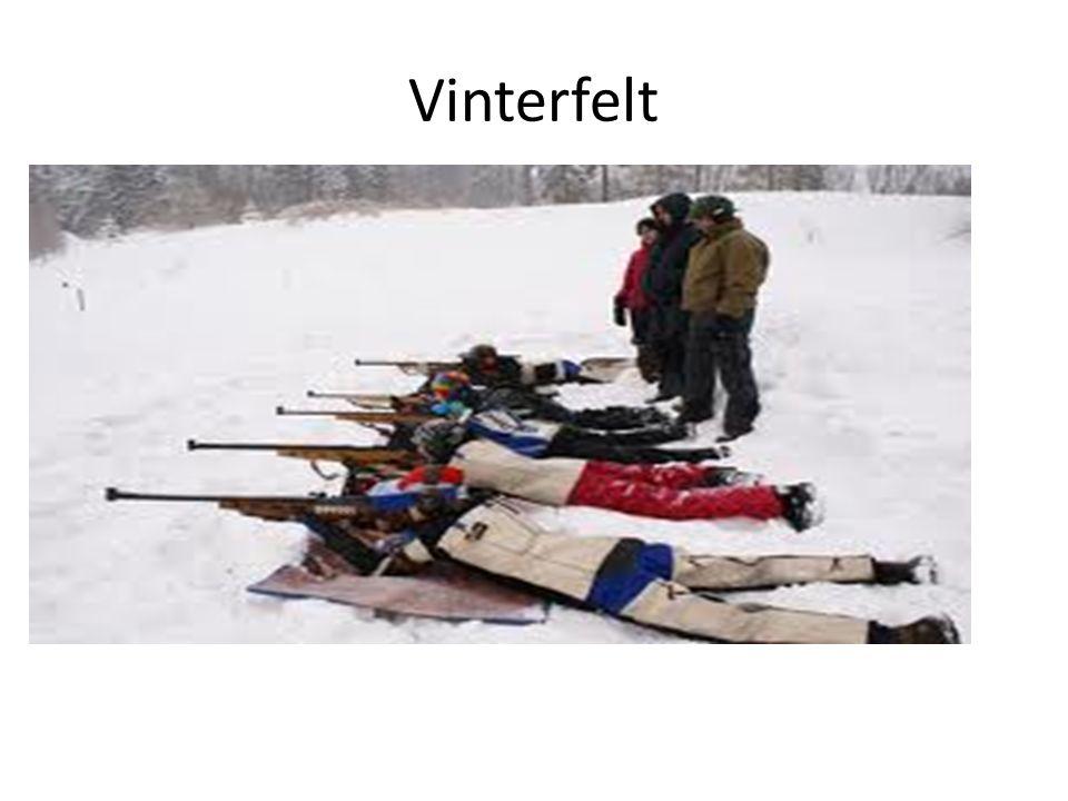 Vinterfelt