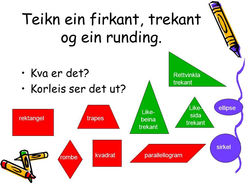 GEOMETRIJAKT ELEVANE FRÅ 5. OG 6. TRINN PÅ SKULEOMRÅDET 15.januar, 2007.