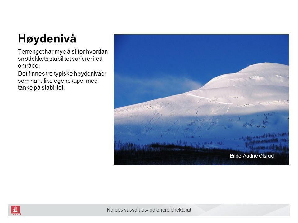 Norges vassdrags- og energidirektorat Høydenivå Terrenget har mye å si for hvordan snødekkets stabilitet varierer i ett område.