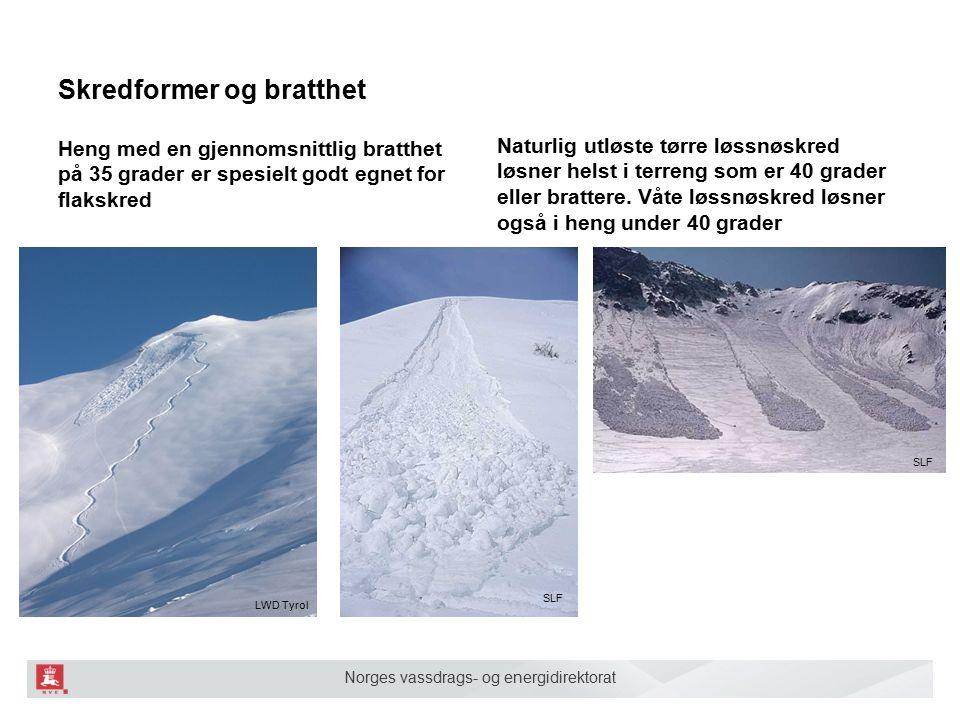 Norges vassdrags- og energidirektorat Topper, rygger, egger og skar og 100- ca 300 høydemeter nedenfor Ådne Olsrud