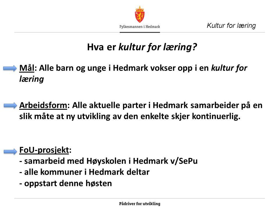 Kultur for læring i Hedmark Kultur for læring – en felles satsing for god læring i Hedmark Alle kommunene Fylkesmannen Fagforeningene NHO & KS Foreldreutvalget Høgskolen i Hedmark www.sepu.no