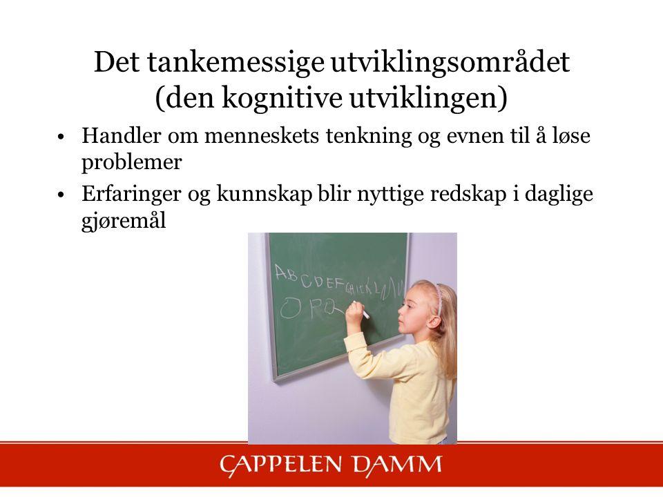 Det tankemessige utviklingsområdet (den kognitive utviklingen) Handler om menneskets tenkning og evnen til å løse problemer Erfaringer og kunnskap bli