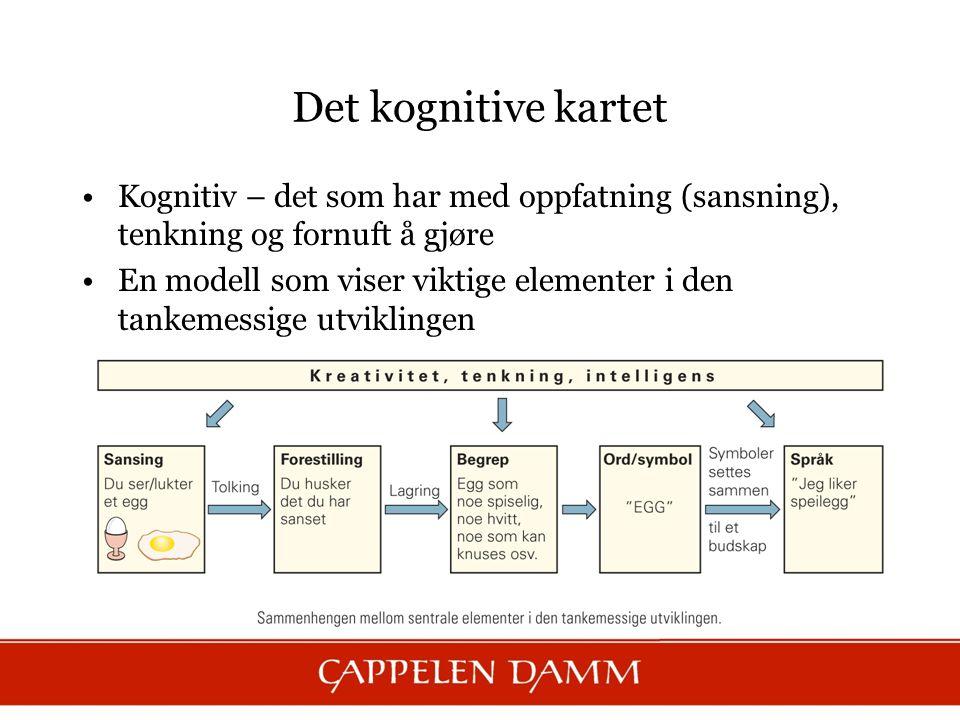 Det kognitive kartet Kognitiv – det som har med oppfatning (sansning), tenkning og fornuft å gjøre En modell som viser viktige elementer i den tankeme