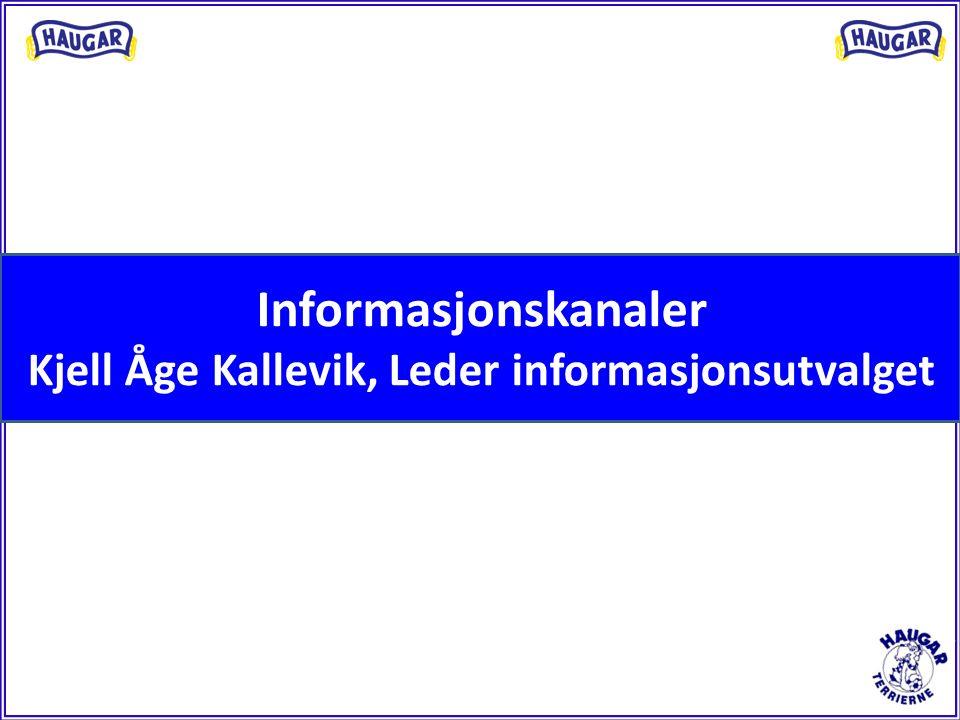 Informasjonskanaler Kjell Åge Kallevik, Leder informasjonsutvalget