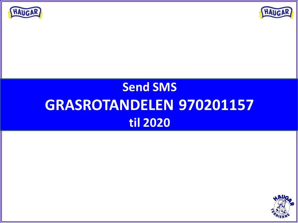 Send SMS GRASROTANDELEN 970201157 til 2020
