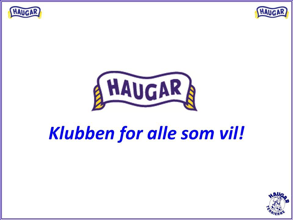 Formål og Visjon SK Haugar skal være en klubb der det er kjekt å være, og alle skal få mulighet til å utvikle seg.