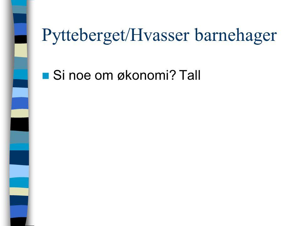 Pytteberget/Hvasser barnehager Si noe om økonomi Tall