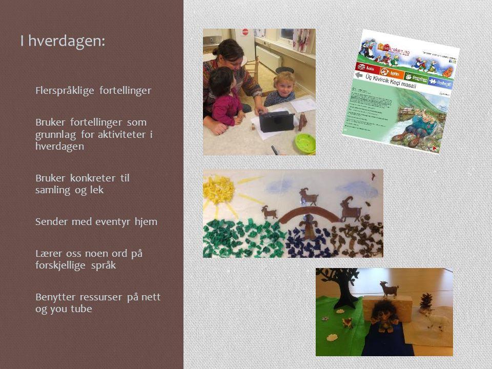 På morsmålsdagen Førjuls Quiz Foreldre og besteforeldre som bidrar Samlinger på forskjellige språk Lærer oss å hilse på forskjellige språk Skape engasjement og anerkjennelse
