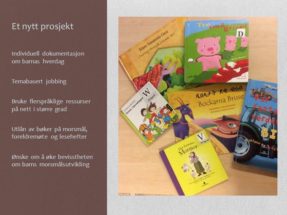 Et nytt prosjekt Individuell dokumentasjon om barnas hverdag Temabasert jobbing Bruke flerspråklige ressurser på nett i større grad Utlån av bøker på morsmål, foreldremøte og lesehefter Ønske om å øke bevisstheten om barns morsmålsutvikling