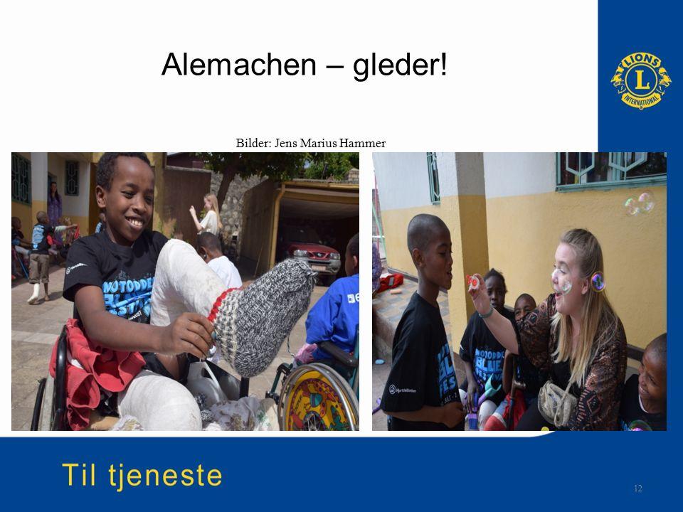 Alemachen – gleder! 12 Bilder: Jens Marius Hammer