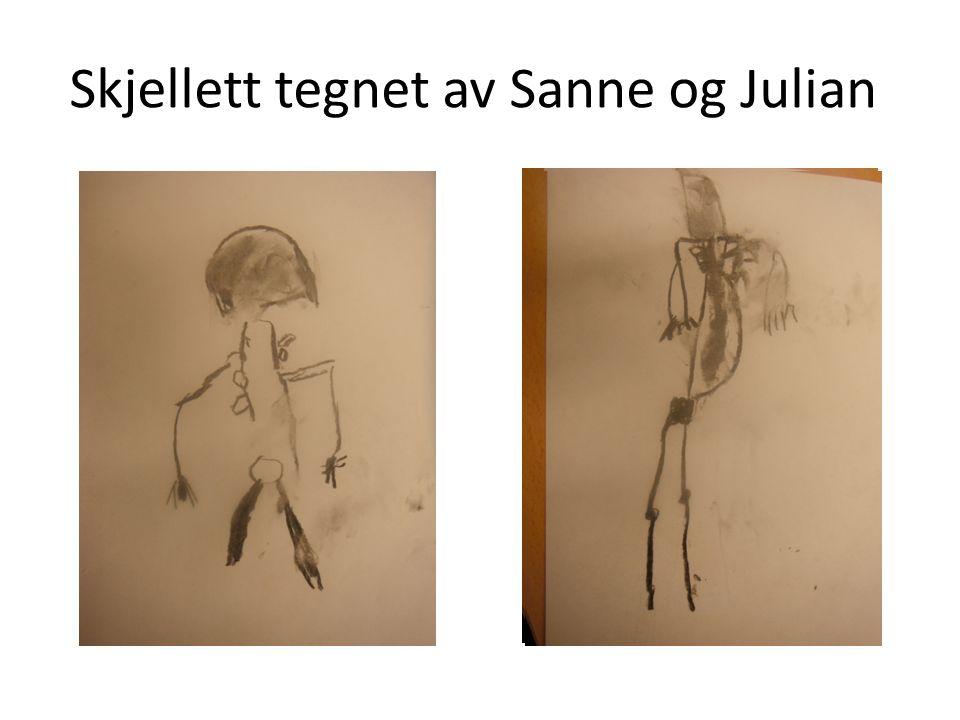 Skjellett tegnet av Sanne og Julian
