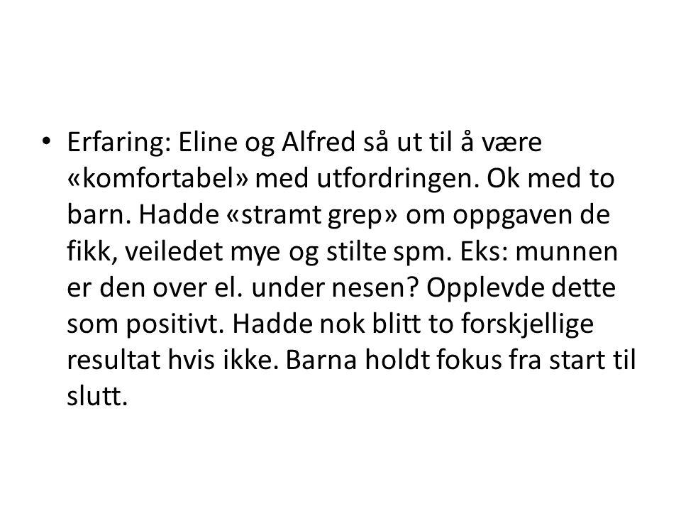 Erfaring: Eline og Alfred så ut til å være «komfortabel» med utfordringen.
