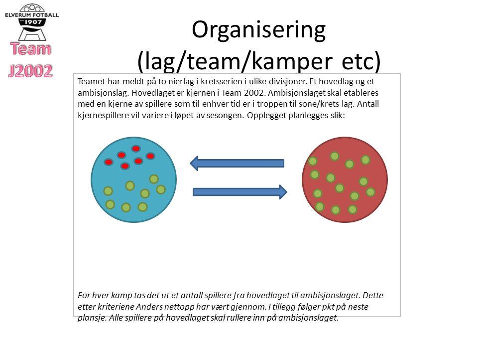 Organisering (lag/team/kamper etc) Teamet har meldt på to nierlag i kretsserien i ulike divisjoner.
