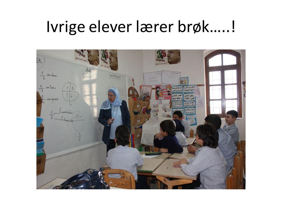 Ivrige elever lærer brøk…..!